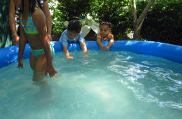 Children swim in an inflatable pool in Jorge Torres' garden in the Bronx.