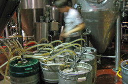At work in the brewery.